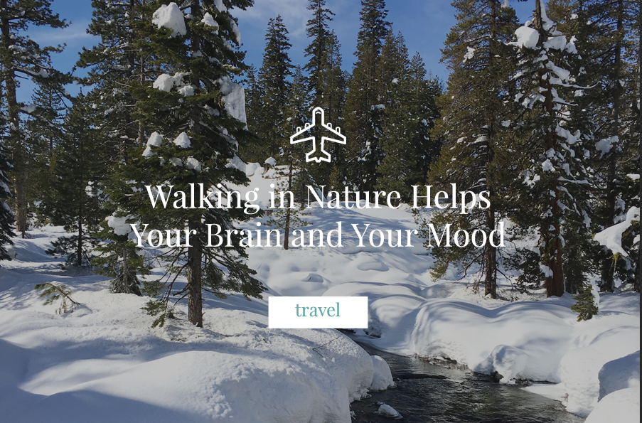 Walking in Nature Helps Your Brain and Your Mood