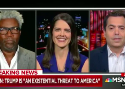 MSNBC, All In with Chris Hayes with Cornell Belcher and Greg Sargent